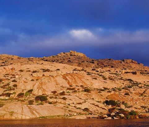 Asinara 11