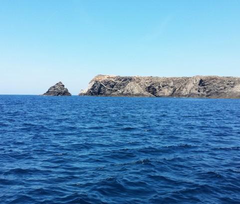 Asinara 36