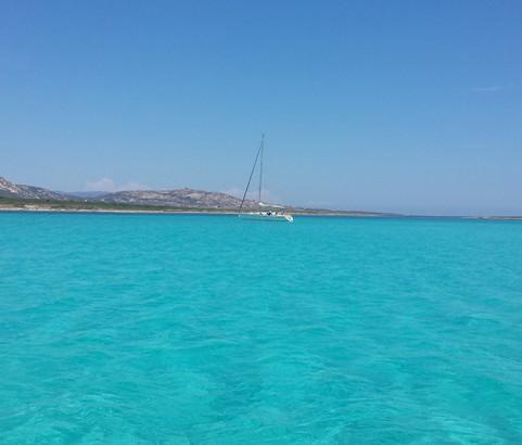 Asinara 56